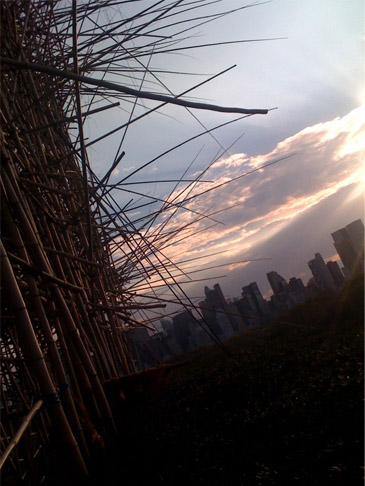 NYC skyline with bamboo